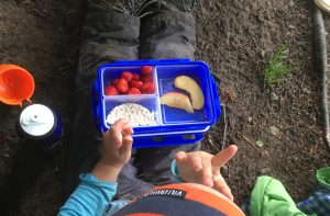 Frühstück im Wald